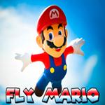 Fly Mario
